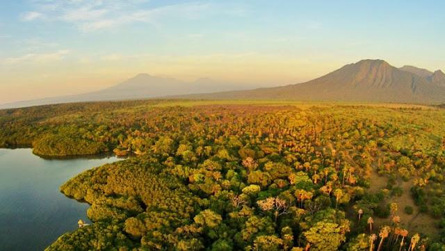 Taman Nasional Baluran Dengan Pemandangan Eksotis Ala Afrika Tempat Wisata Terbaik Yang Ada Di Indonesia: Taman Nasional Baluran Dengan Pemandangan Eksotis Ala Afrika