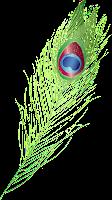 peacock feather symbolisis lord krishna