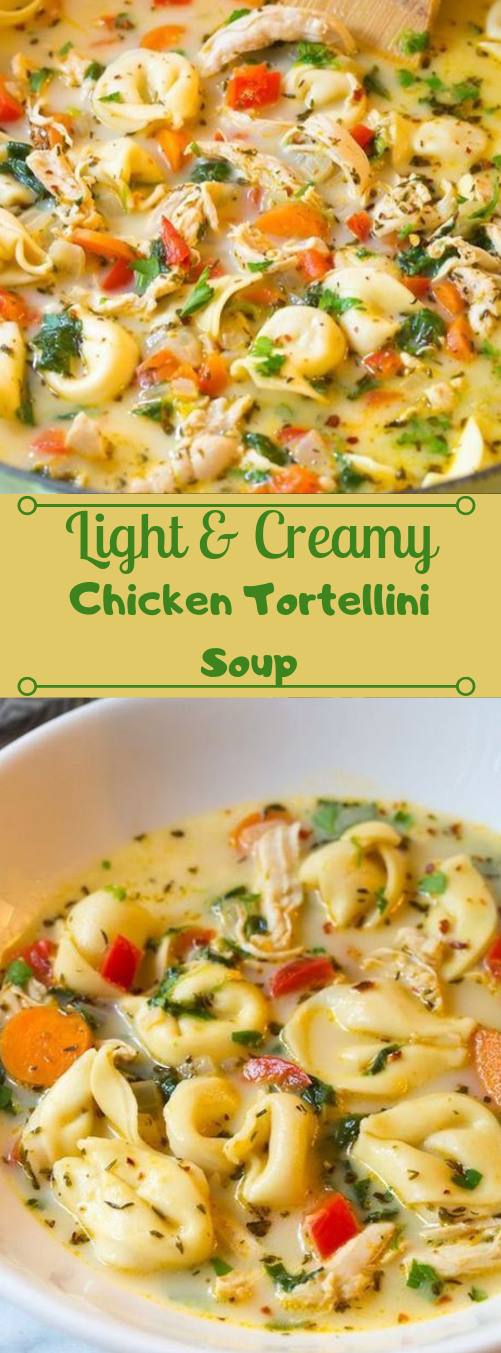 Creamy Chicken Tortellini Soup #dinner #tortellini #soup #halthyrecipes #lunch
