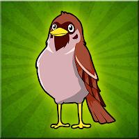 Sparrow Bird Escape Walkt…