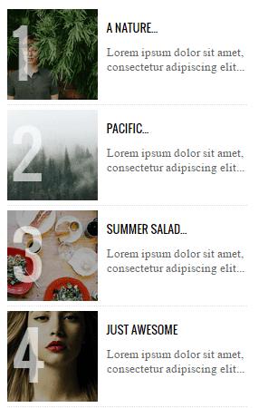 Blogger Populer Yayınlar Tasarım 5