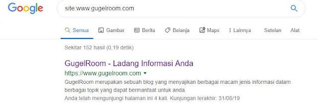 Cara Cek Artikel Blog Sudah di Indeks Google atau Belum