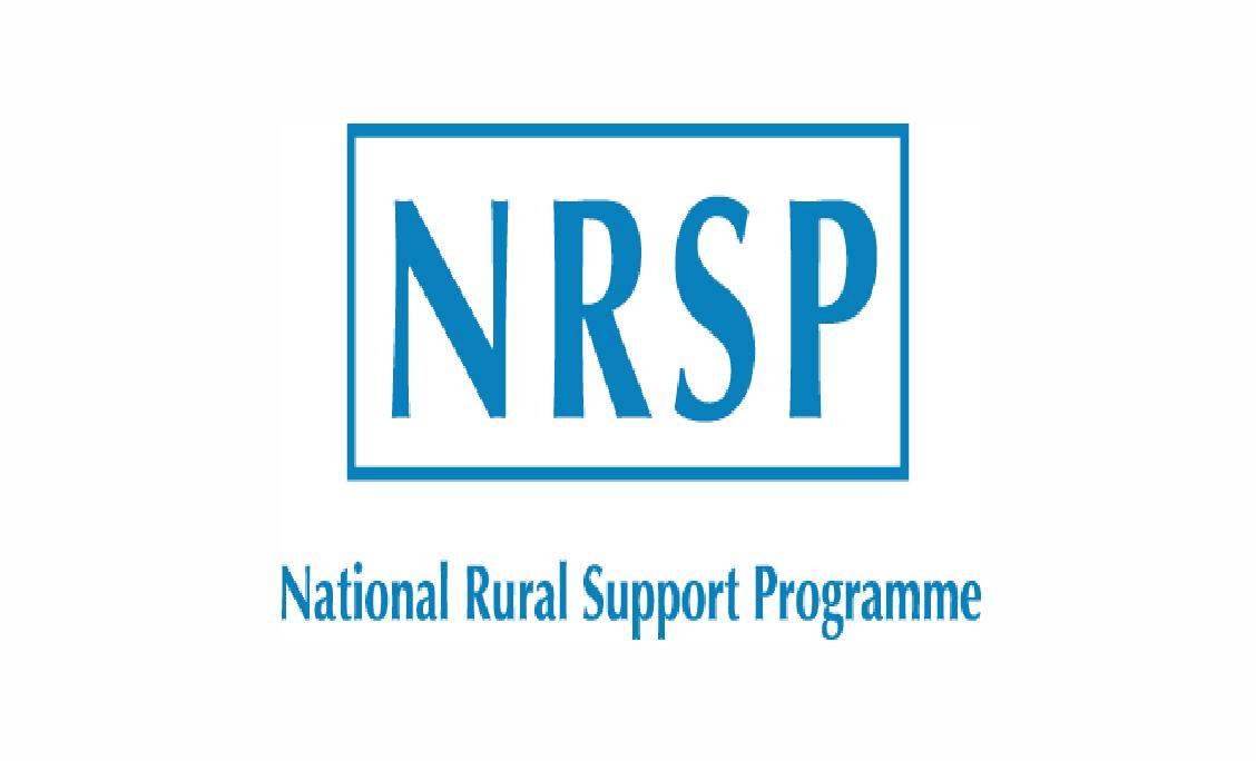 Upap.hrjobs@mail.com - NRSP National Rural Support Program Jobs 2021 in Pakistan