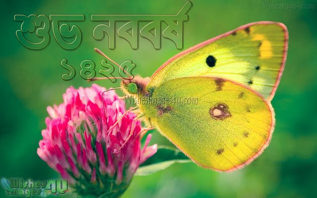 Pohela Boishakh 1425 Wallpaper - Pohela Boishakh 1425 New Image