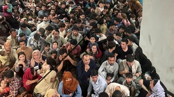 Afgán médiavállalkozó a New York Timesnak: Akár húsz Orbán Viktor felemelkedésének lehetünk szemtanúi