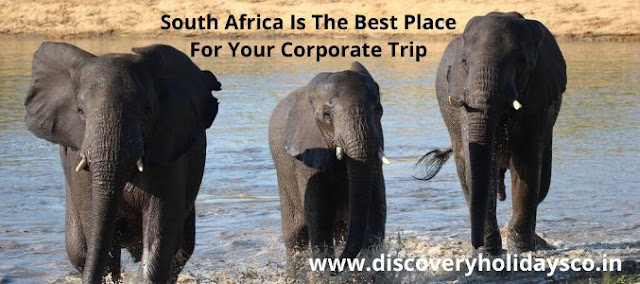 Why South Africa Is The Best Place For Your Corporate Trip