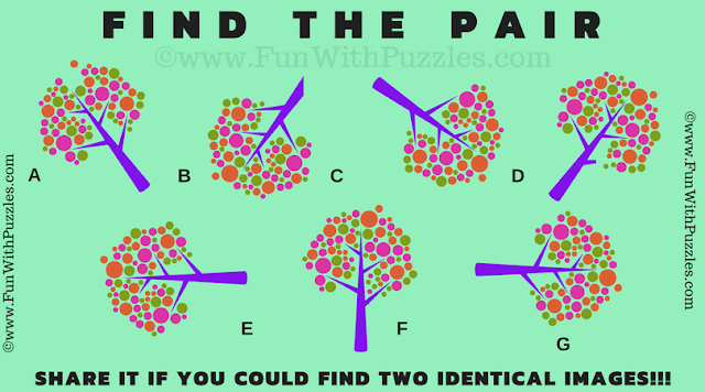 In the Picture Puzzle, your challenge is to find the matching pair among 7 given puzzle images