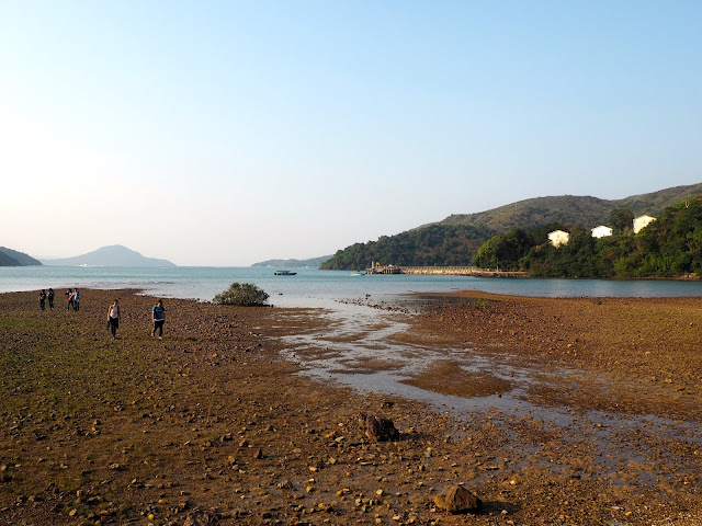 Coastal views near Wong Shek Pier, on the trail to Pak Tam Au from Tai Long Wan, Hong Kong
