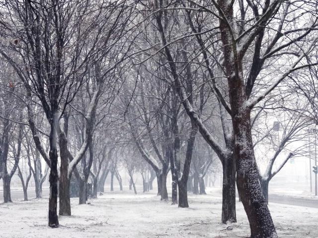 Έρχονται τα πρώτα χιόνια στη Θράκη - Πτώση της θερμοκρασίας
