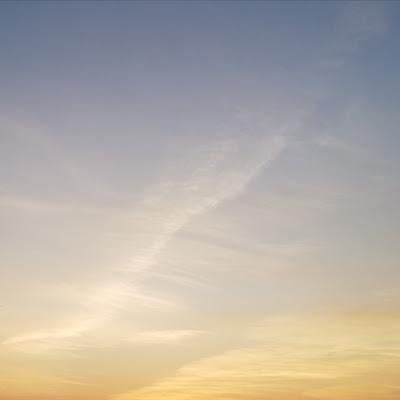 Zonsondergang met blos