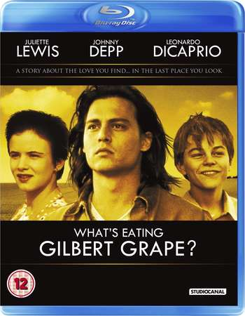 Poster Of Poster Of What's Eating Gilbert Grape 1993 English 350MB BRRip 480p ESubs Free Download Watch Online Worldfree4u