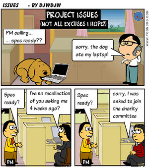 Project Issue Management
