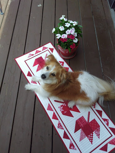 Dog on red and white quilted runner