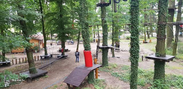 Park Linoyw w Lubuskim