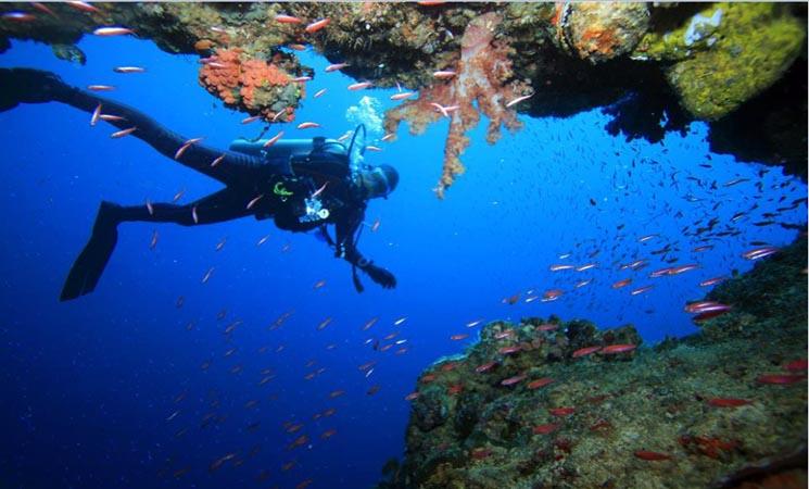 Keindahan Pantai Fatkauyon di Kepulauan Sula Semakin Terkenal