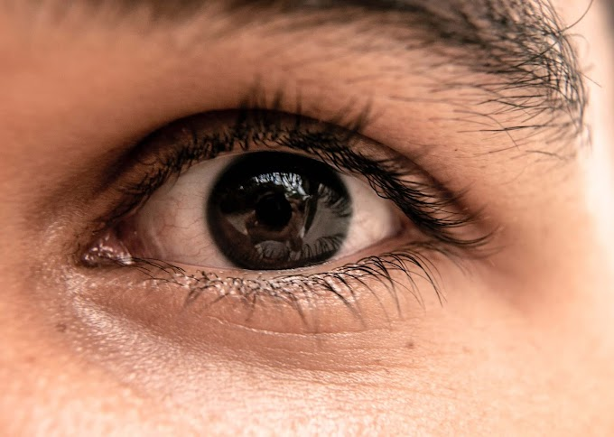 Best Under Eye Creams in India for Dark Circles