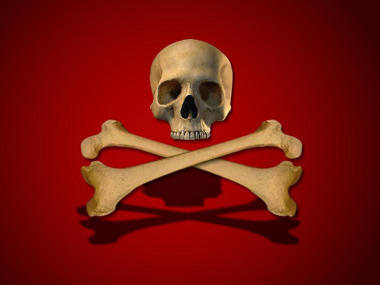 lea michele: Skull crossbones wallpaper