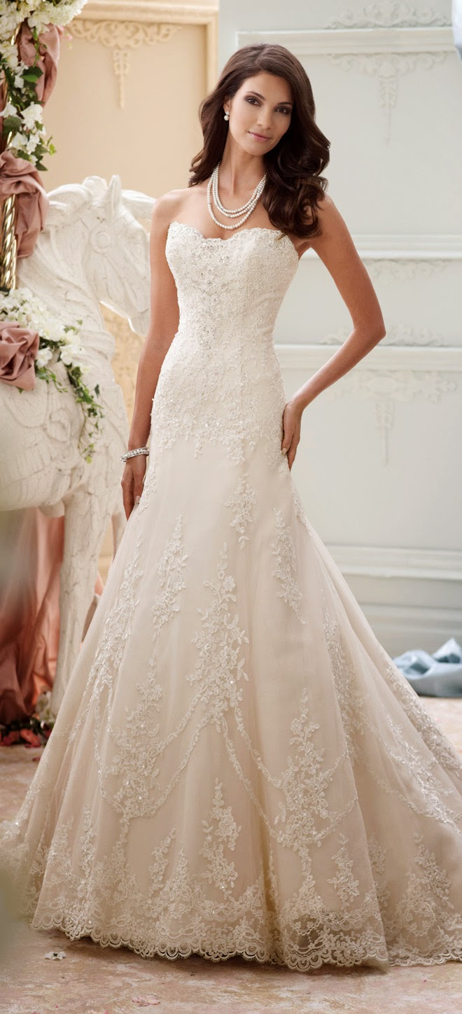 David tutera for mon cheri spring 2015 bridal collection belle the please contact mon cheri for authorize retailers and pricing information see more of david tutera junglespirit Choice Image