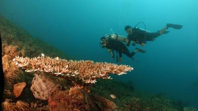 Program 100 Hari Kerja, BPPD Lotim Identifikasi Wisata Bahari