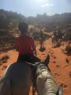 Luberon, Riitta reissaa, Colorado de Provence, ratsastusmatka, Horsexplore