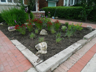 Paul Jung Gardening Services Avenue Road Toronto Front Garden Cleanup After