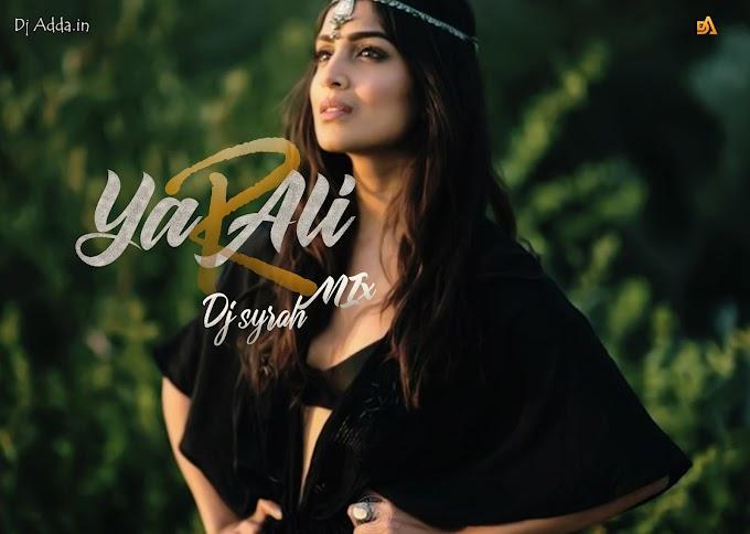 Ya Ali (Mashup) -DJ Syrah