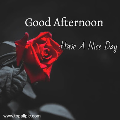 wishes good afternoon images hd