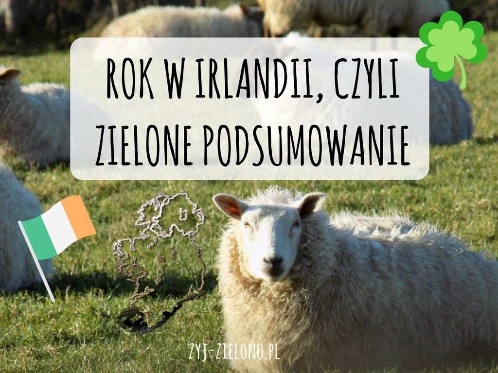 JAK WYGLĄDA ŻYCIE W IRLANDII