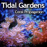 Shop Tidal Gardens at McBone