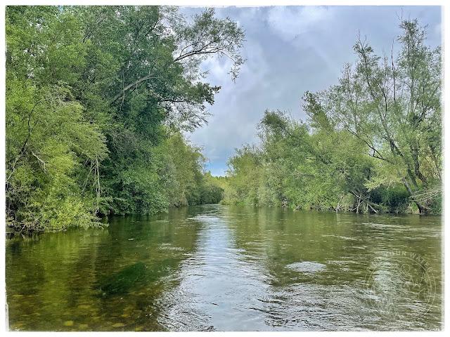 IMG 1160 - Dos jornadas, mismo río. Parte 2
