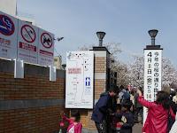 大阪造幣局 桜の通り抜け ルート案内図