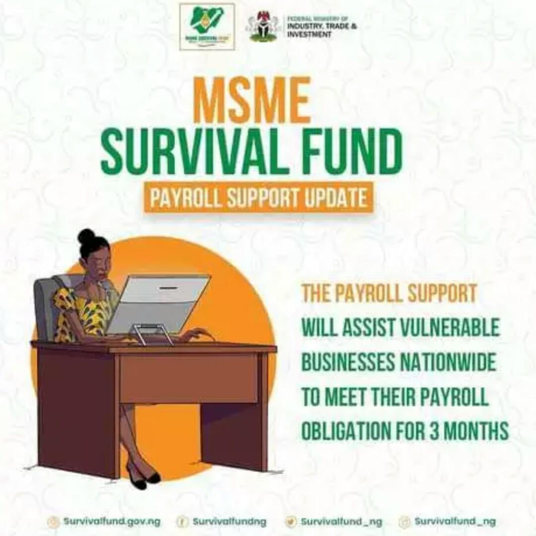 New (https://survivalfund.gov.ng) Survival Fund 2021 Application Registration/Login Portal