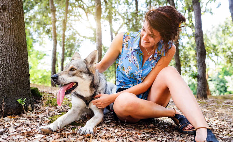 How to Be a More Eco-Friendly Pet Owner