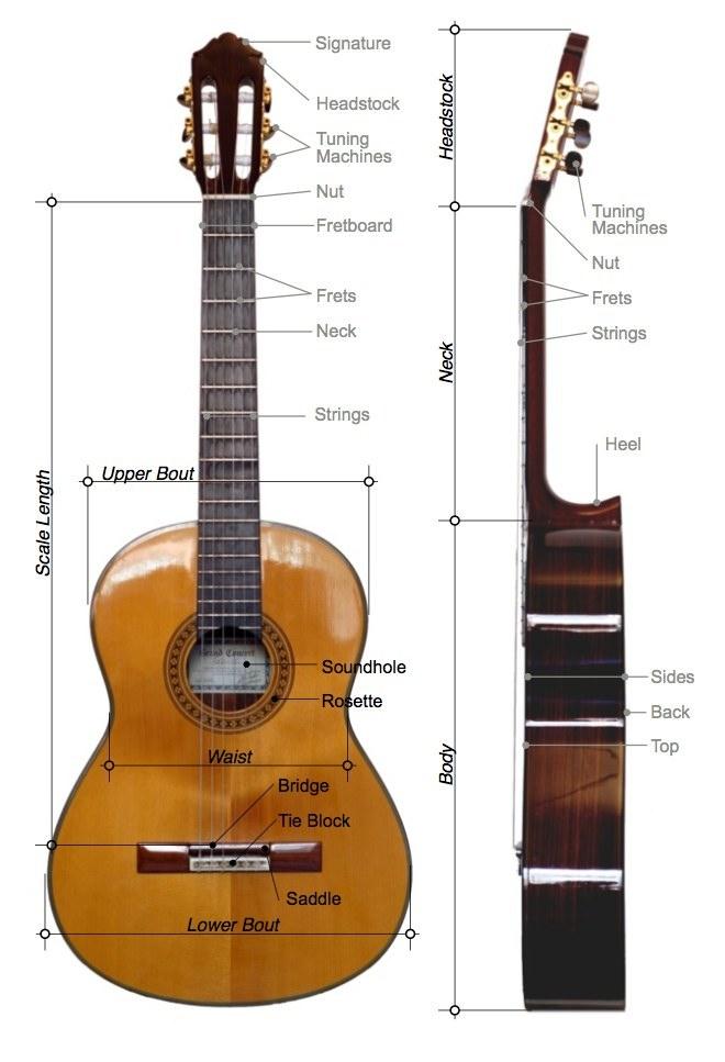 The Music Salon Tuning Guitar
