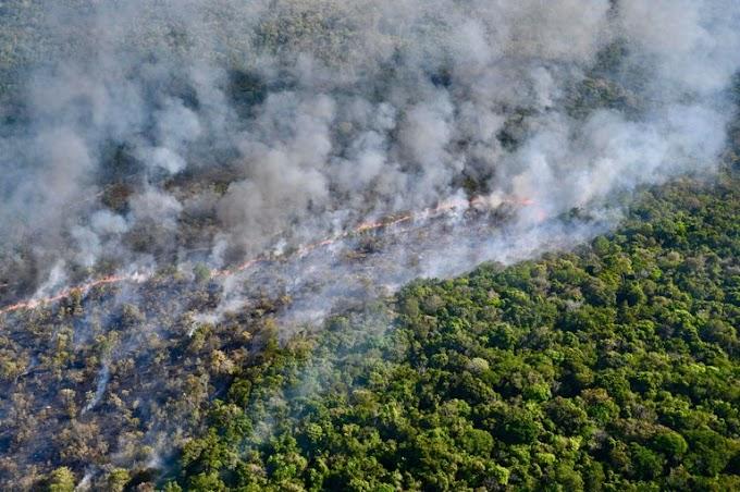 MPF investiga desmatamento ilegal em área protegida de Alter do Chão (PA) que incendiou