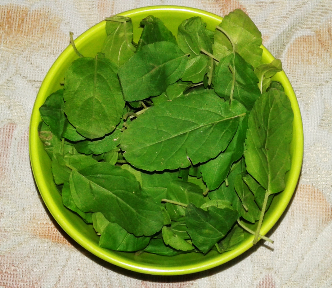 basil leaves special desi recipes