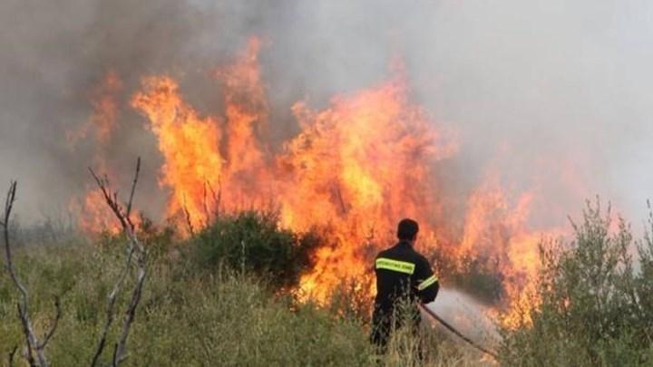 Πυρκαγιά ξέσπασε στα Άνω Βούναινα