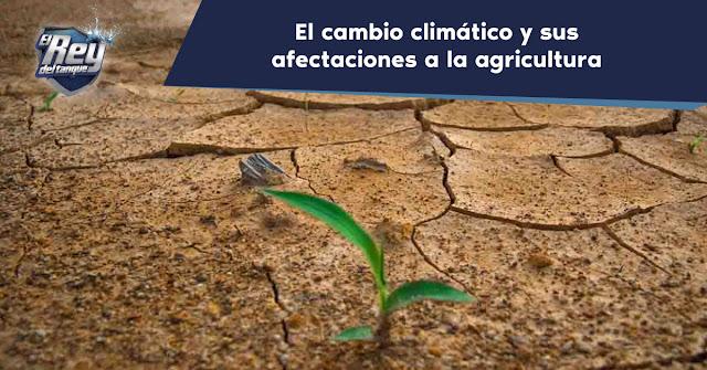 el-cambio-climatico-y-sus-afectaciones-a-la-agricultura