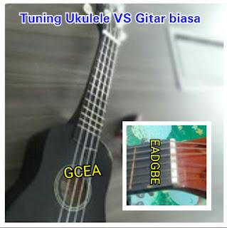 Belajar membedakan ukulele dengan gitar biasa