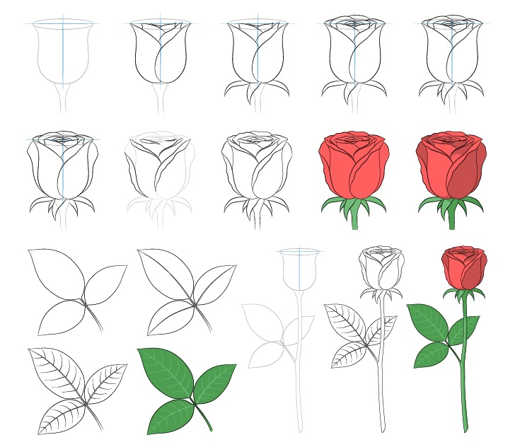 Gambar mawar selangkah demi selangkah
