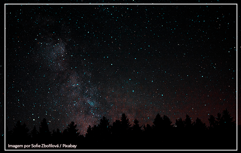 A imagem mostra um céu noturno, brilhante e cheio de estrelas. Abaixo, na linha do horizonte, estão várias silhuetas escuras de árvores, parecidas com pinheiros