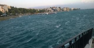 Χαλκίδα: Φόρεσε το μαγιό του και τους «κούφανε» – Απίθανες σκηνές στην παλιά γέφυρα του Ευρίπου