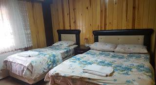 فندق دانا
