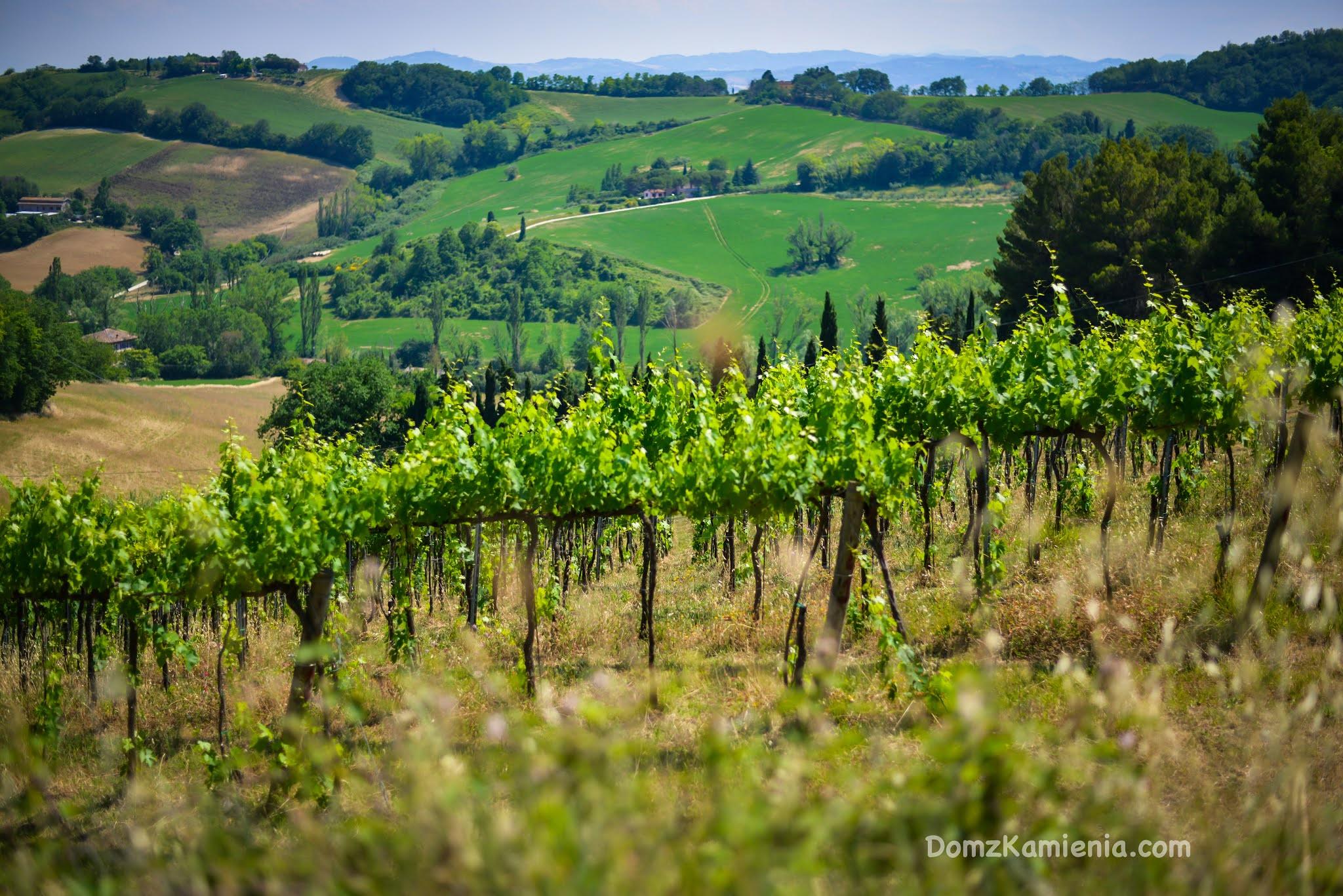 Monte San Bartolo - Dom z Kamienia blog o życiu we Włoszech