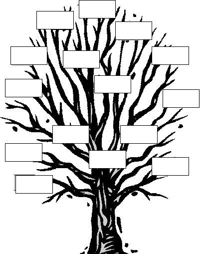 Àrvore genealógica o mundo das crianças