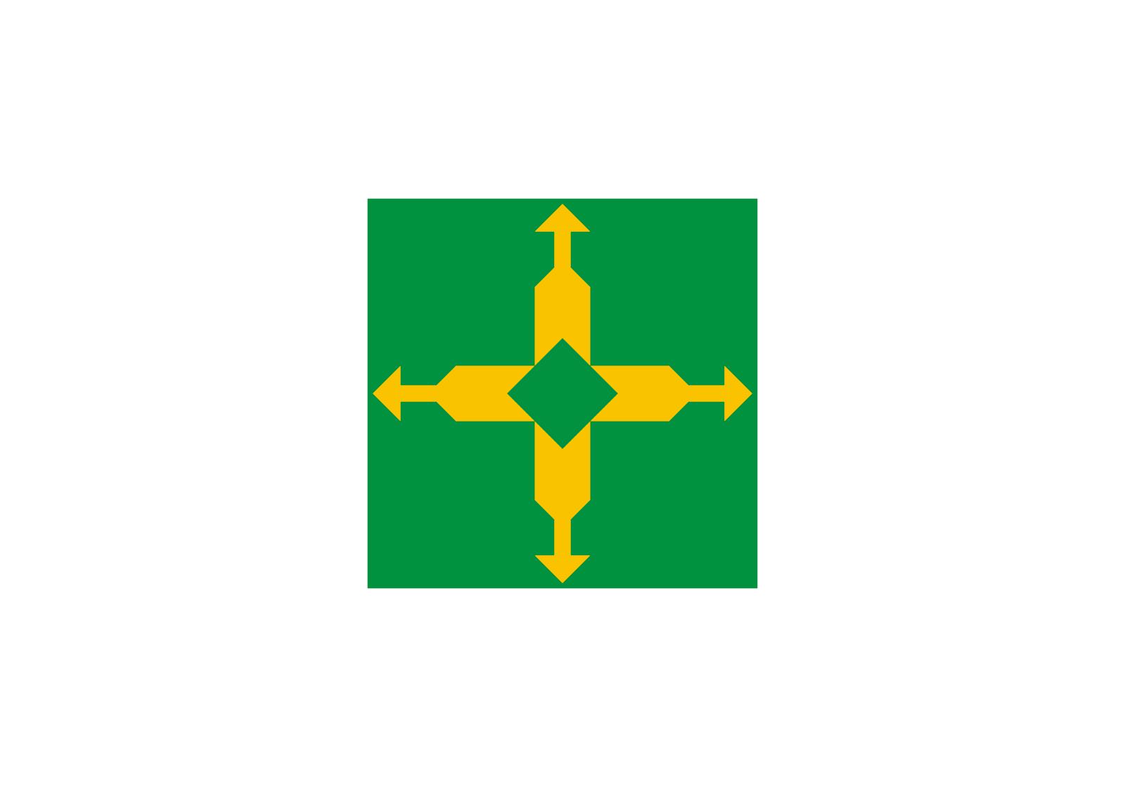 Bandeira do Distrito Federal (Brasil)
