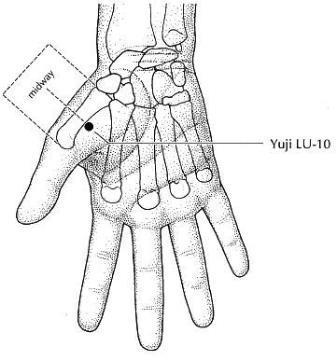 Puntos de acupuntura en las manos para adelgazar