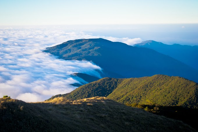 Mt.Pulag: Sea of Clouds