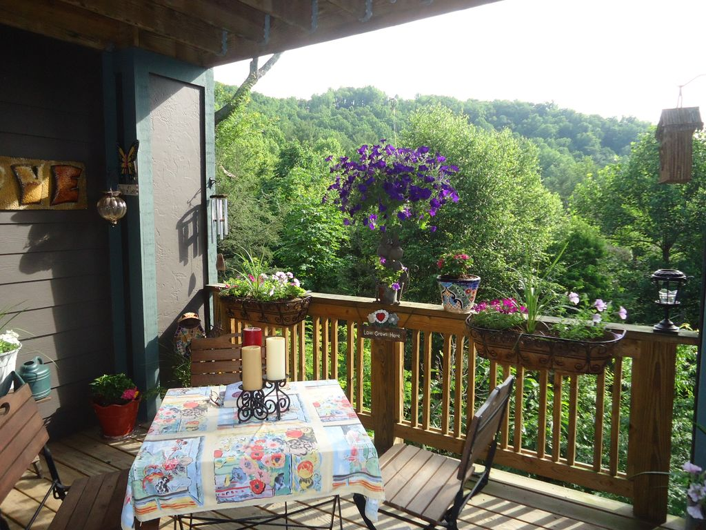 cabins rent rooms states cabin in alpine nc log carolina boone near for north houses united