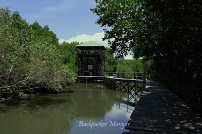 Hutan Mangrove Taman Hutan Raya Ngurah Rai Bali dengan watching tower - Backpacker Manyar